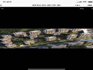 平湖市新仓镇-碧桂园星悦里