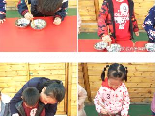 洛阳高新区幼儿园:生活自理能力比赛