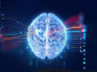 联众最强大脑——值得一试的全脑加盟