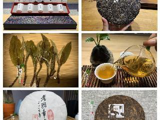 尚延坊普洱茶:掌握下面这6个概念