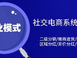 潘高寿白黑通系统开发