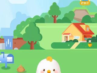 蛋蛋佳制作开发公司